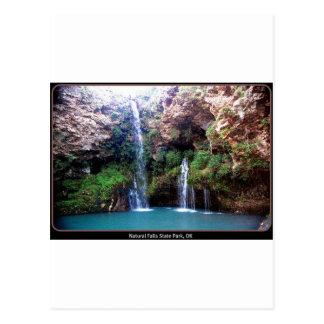 Natural Falls Postcard