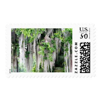 Natural Florida Postage