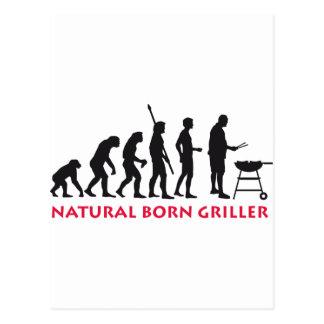 Natural fount Griller 2C Post Card