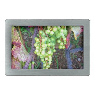 Natural Grapes Rectangular Belt Buckle