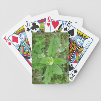 Natural Green flower leaf Poker Playing Card Bicycle Playing Cards