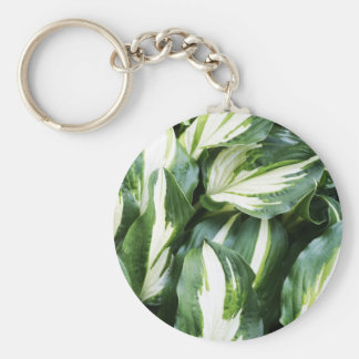 natural  Green leaf leaves Trees Earth Beautiful D Keychain