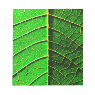 natural  Green leaf leaves Trees Earth Beautiful D Notepad