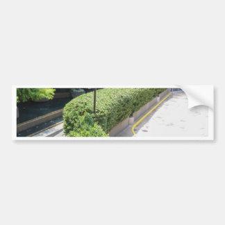 Natural Hedge Car Bumper Sticker