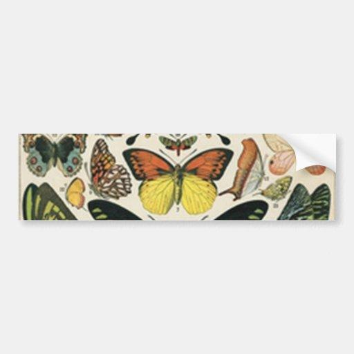Natural History Butterfly Pegatina De Parachoque