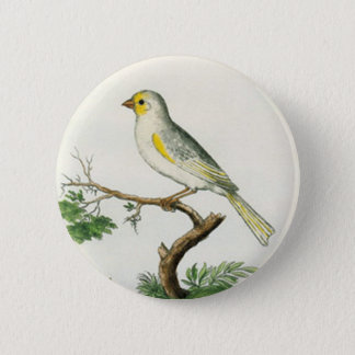 Natural History of Birds Button
