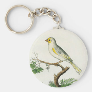 Natural History of Birds Keychain