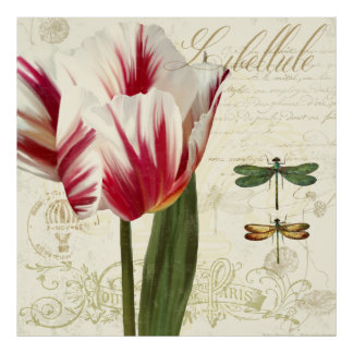 Natural History Sketchbook II botanical print