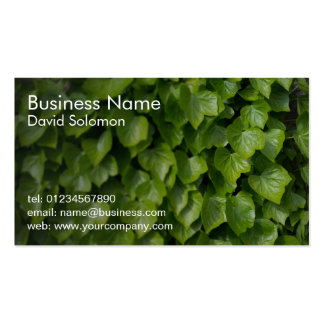 Natural Ivy Business Cards