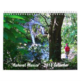 """""""Natural Mexico"""" - 2018 Calendar"""