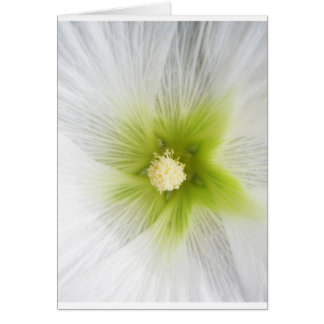 natural natural  Green Trees Earth Beautiful Desig Card