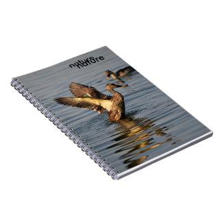 natural notebook