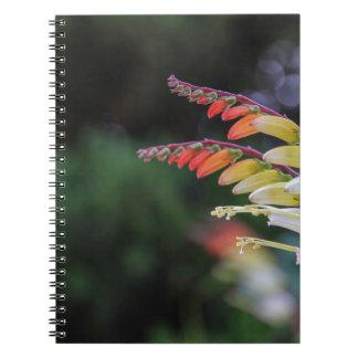 Natural Journals