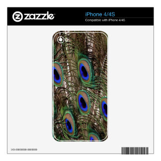 Natural Peacock  tail feathers with blue eyes Skin For iPhone 4