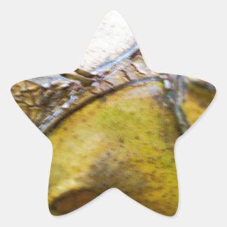 Natural Pegatina En Forma De Estrella