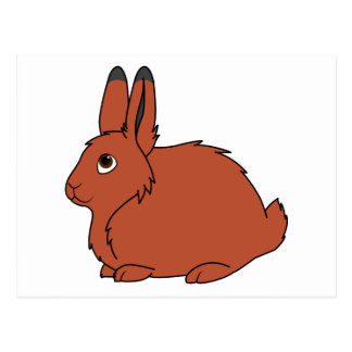Natural Red Arctic Hare Postcard