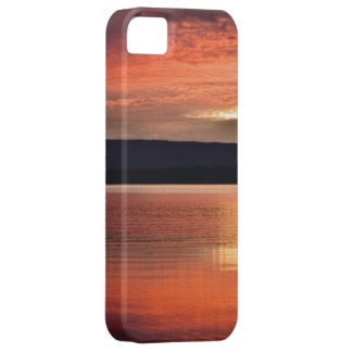 Natural Sanctuary iPhone SE/5/5s Case