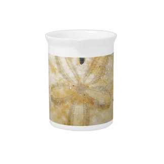 Natural Sand Dollar Beverage Pitcher