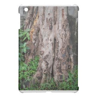 Natural Sculpture iPad Mini Cover