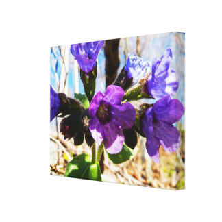 Natural Spring Flowers Canvas Print
