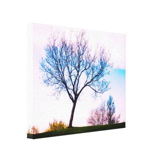 Natural Spring Landscape Canvas Print