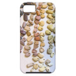 Natural Stone Rainbow - iPhone 5 case