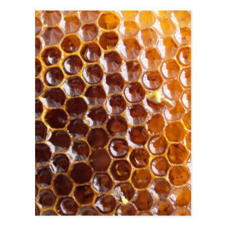 Natural Textures - Honeycomb Postcard
