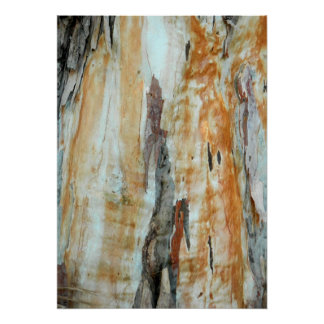 Natural tree bark colorful orange and gray picture poster