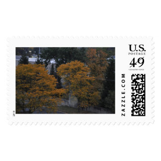 Natural Trees in the wind postage stamp