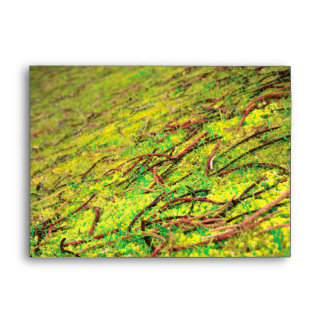 Natural vivid colors envelopes