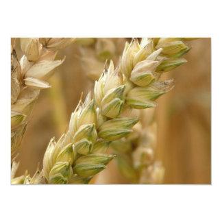 Natural Wheat Spike 5.5x7.5 Paper Invitation Card