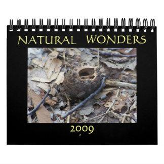 Natural Wonders 2009 Calendar