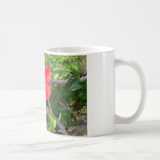 Natural wonders Hawaiian style Coffee Mug