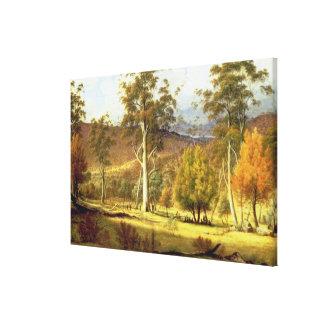 Naturales en el bosque en los llanos de los molino impresión en lienzo