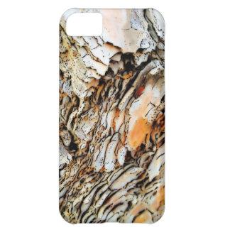 Naturaleza abstracta de la corteza de árbol