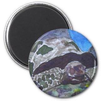 Naturaleza acuática de la tortuga de la tortuga ví imán redondo 5 cm