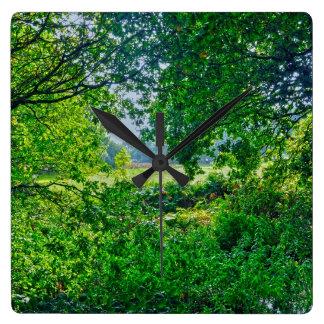 Naturaleza-amantes de los árboles, del agua y del reloj cuadrado