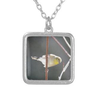 Naturaleza americana del Goldfinch del pájaro Pendiente Personalizado