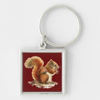 Naturaleza animal linda de la ardilla roja de la a llavero cuadrado plateado