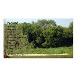 Naturaleza, árboles tarjetas de visita