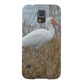 Naturaleza blanca de Ibis del pájaro Carcasas Para Galaxy S5