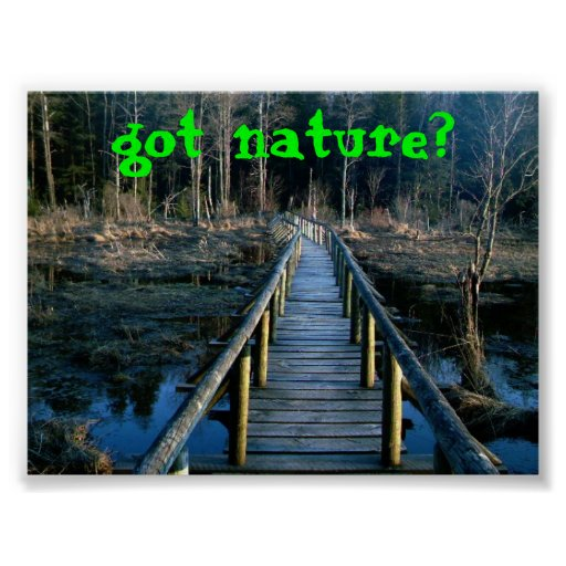 ¿naturaleza conseguida? impresiones