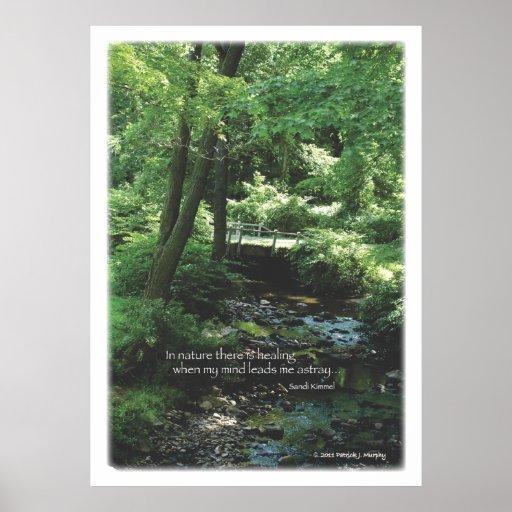 Naturaleza curativa póster
