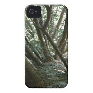 Naturaleza de Braches del árbol Funda Para iPhone 4