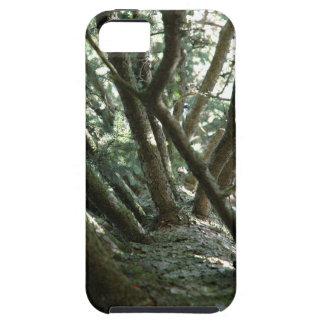 Naturaleza de Braches del árbol Funda Para iPhone SE/5/5s
