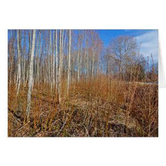 Naturaleza de Greenary en Estonia Tarjeta De Felicitación