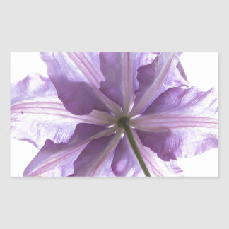 Naturaleza de la flor pegatina rectangular