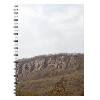 Naturaleza de Sariska y una colina resistida Libretas