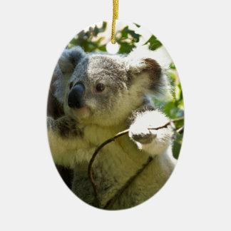 Naturaleza del destino de Aussi de los osos de Adorno Navideño Ovalado De Cerámica