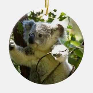 Naturaleza del destino de Aussi de los osos de Adorno Navideño Redondo De Cerámica
